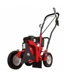 Southland SWLE0799 79CC 4 Stroke  Powered Lawn Edger